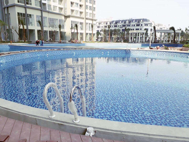 Bể bơi mang phong cách mới lạ và ấn tượng (hình minh hoạ)